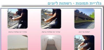 גלריית תמונות רשתות ליונים