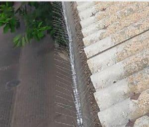דוקרנים נגד יונים על גג