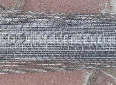 רשת נגד יונים מגולוונת