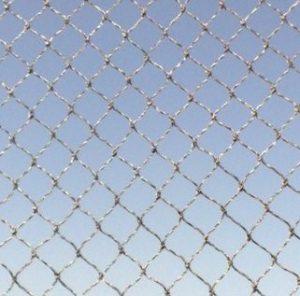 רשת להרחקת ציפורים